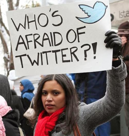 Who is afraid of Twitter? or How can the Internet shape collective actions
